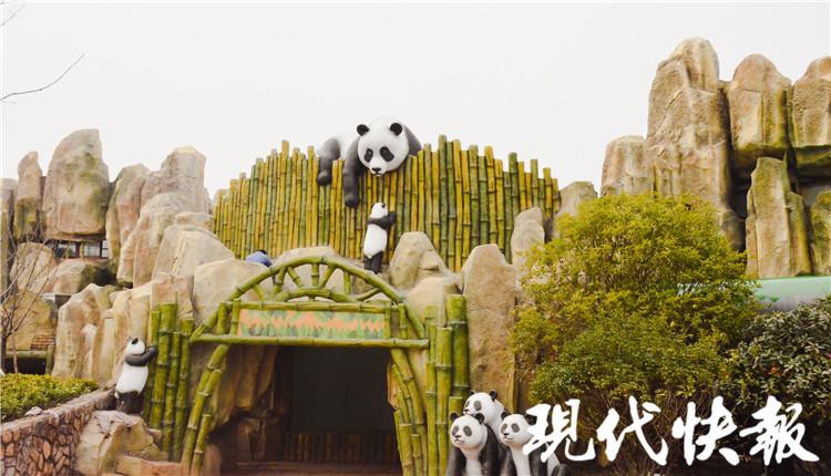 △大熊猫馆入口处 南通野生动物园供图