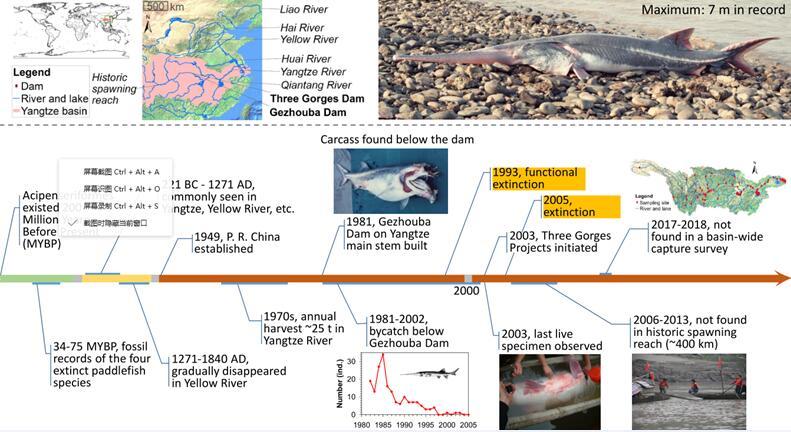 生活了1.5億年,這一次真的是永別了嗎?(圖)