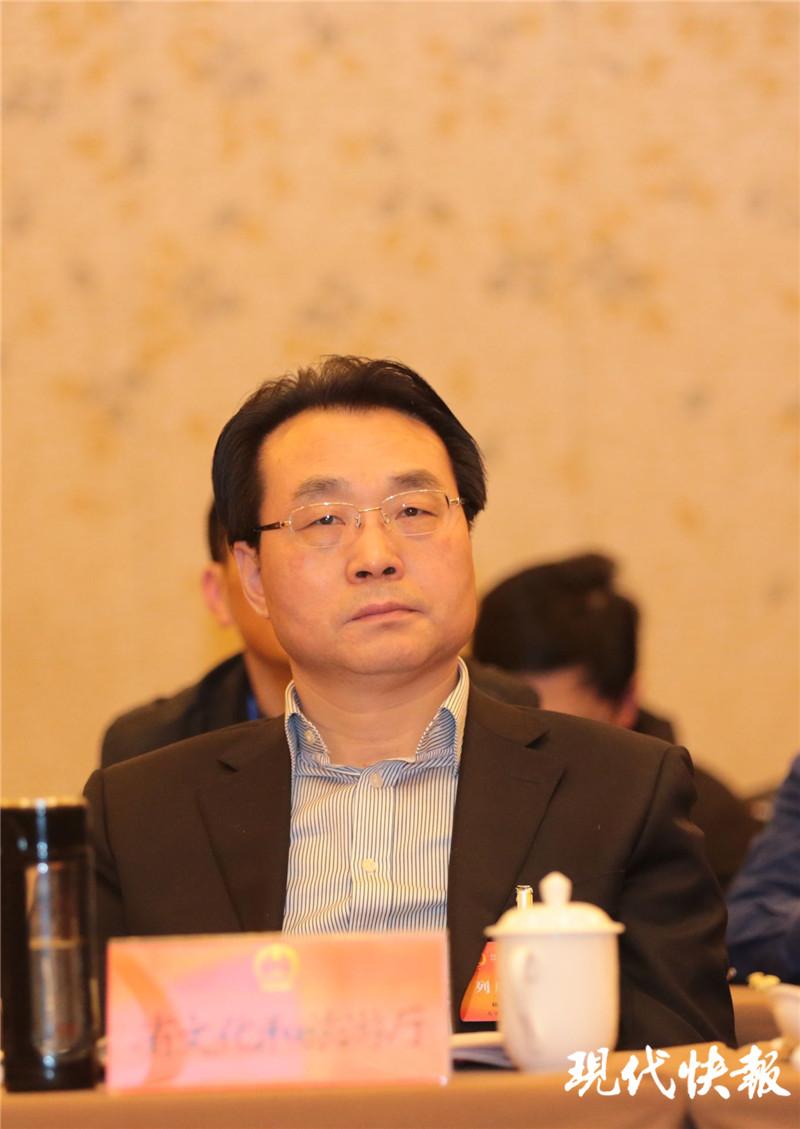 江苏两会丨省文旅厅厅长杨志纯: